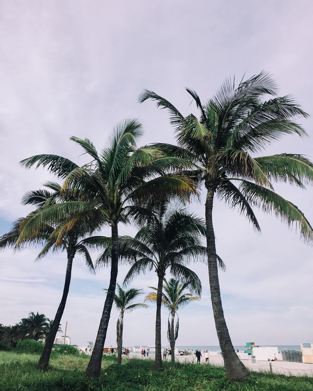 liability insurance in Florida