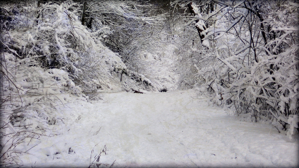 Harsh Winter Weather and PA Homeowners Insurance